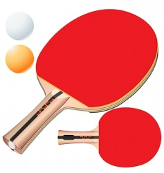 table tennis equipment vector