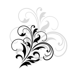 Swirling dainty foliate calligraphic design vector