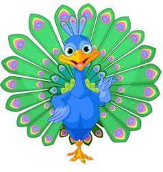 Cartoon peacock vector