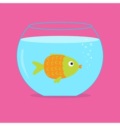 Orange fish in the aquarium card vector