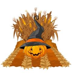 Pumpkin on corn maze vector