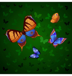 Background of colorful butterflies flying vector