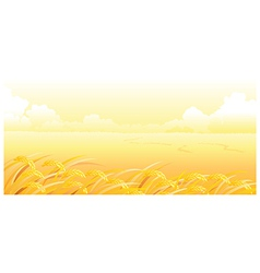 Wheat field and landscape vector