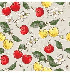 Sweet cherry pattern vector