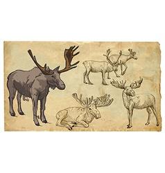 Animals theme reinder - hand drawn pack vector