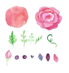 Watercolor rose splash elements set vintage vector
