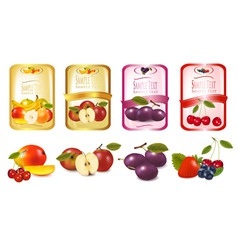 Labels with fruit vector