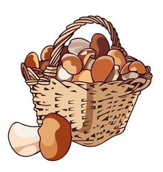 Basket with mushrooms vector