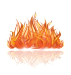 Fire on white background vector