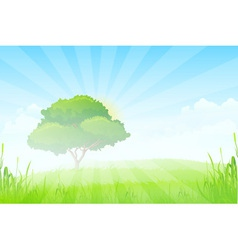 Green landscape with sun clouds grass and one tree vector