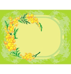 Abstract mimosa branch with background vector