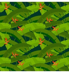 Tropical palm leaves with red heliconia flowers vector