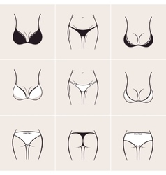 Sexy women bra and panties icons logos vector
