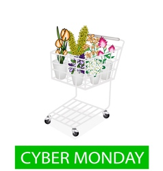 Flower and orchid in cyber monday shopping cart vector