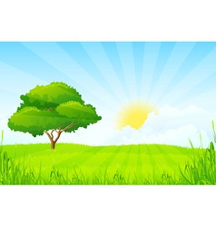 Green landscape with clouds and sun and one green vector