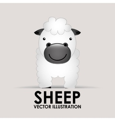 Sheep cute vector
