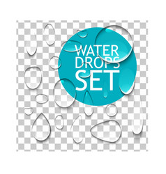 Pure water drops set vector