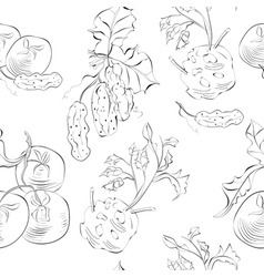 Seamless background with vegetable vector
