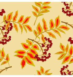 Seamless texture twig rowanberry vector