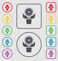 Flowers in pot icon sign symbol on the round and vector