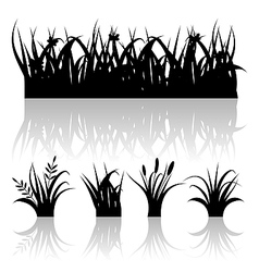 Set silhouette of grass with reflection isolated vector