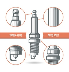 Spark plug auto part vector