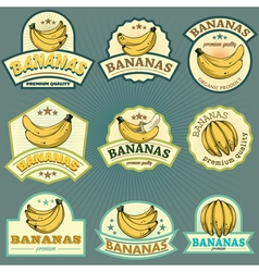Bananas labels vector
