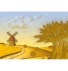 Wheat fields landscape vector