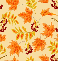 Seamless texture rowanberry and maple leaves vector