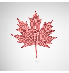 Lined maple leaf vector