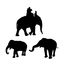 Elephants black silhouette on white background vector