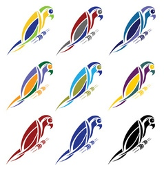 Set of abstract macaw parrot vector