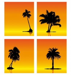 Palm tree silhouettes on sunse vector