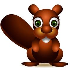 Cute squirrel cartoon vector
