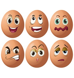 Egg expressions vector
