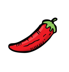 Red chili vector