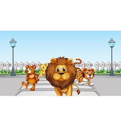 Wild animals in the road vector