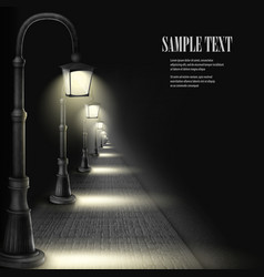 Lamps along paving block street vector