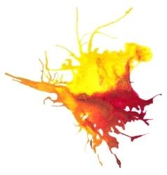 Beautiful traced watercolor splatter vector