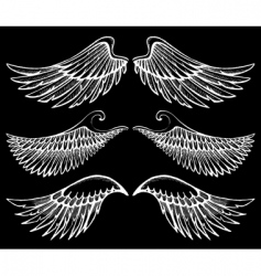 Hand drawn wings set vector