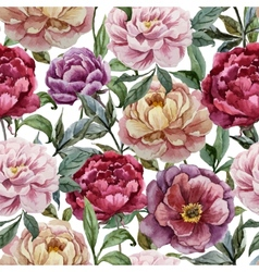 Beautiful watercolor pattern with peonies on white vector