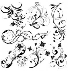 Floral element set vector