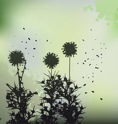 Floral background - dandelion vector