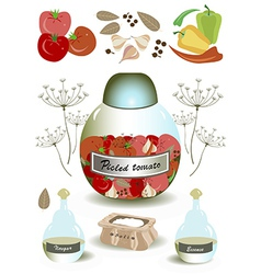 Products for pickled tomato vector