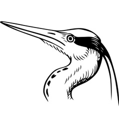 Head of a bird vector
