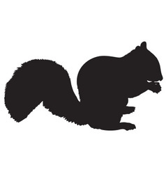 Squireel silhouette vector