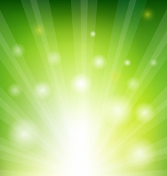 Green sunburst xmas vector