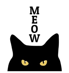 Black cat and meow inscription print on clothes vector