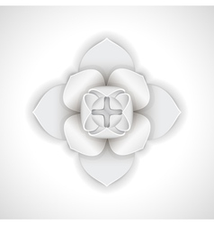 Gypsum flower vector