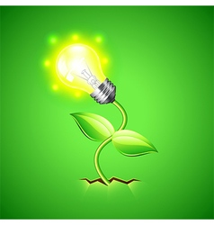 Plant-bulb grows from the ground background vector